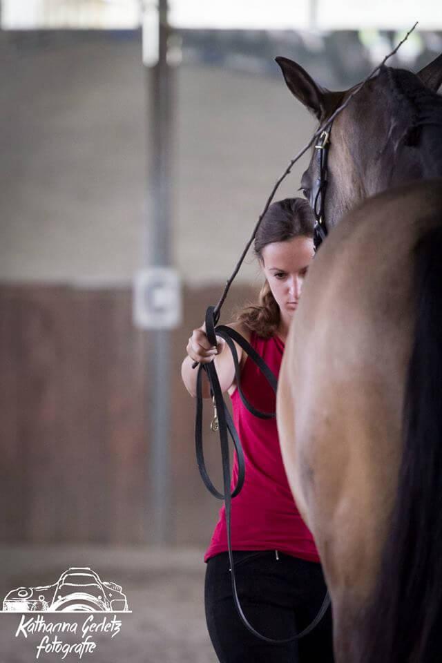 Pferd mit Gerte