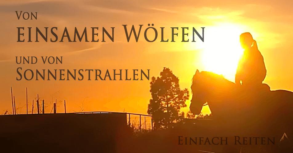Von einsamen Wölfen und Sonnenstrahlen