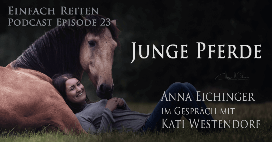 ERP-23: Junge Pferde