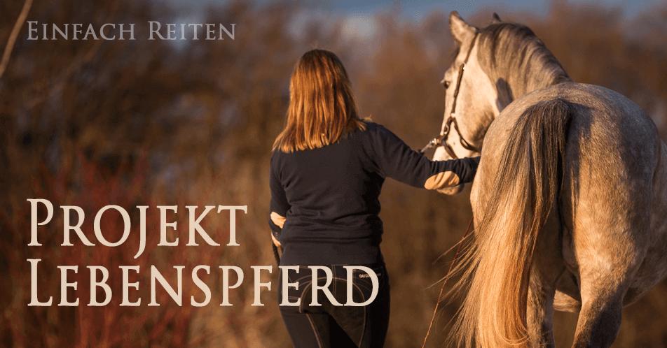 Projekt LebensPferd