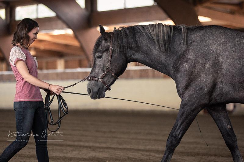 Es ist wichtig während man gemeinsam Zeit mit dem Pferd verbringt fokussiert zu bleiben! Schließlich wollen wir ja auch, dass unser Pferd bei der Sache ist! Als guter Pädagoge muss man mit gutem Beispiel voran gehen.