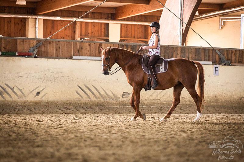 Foto3: Pferd in natürlicher Aufrichtung