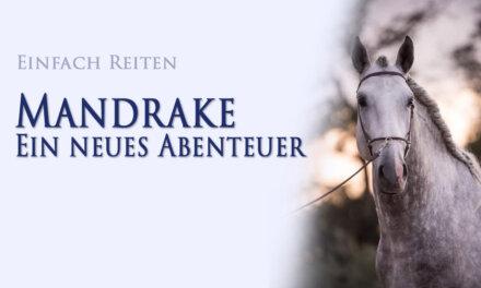 Mandrake – ein neues Abenteuer beginnt