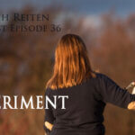 ERP-36 – Das Experiment