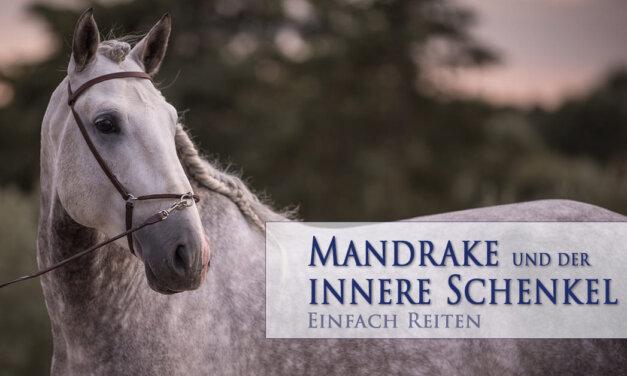 Mandrake und der innere Schenkel
